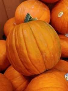Cover photo for Everything Pumpkin
