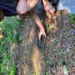 Man grabbing soil on trail