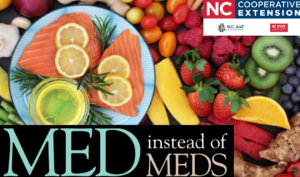 Plate with salmon and lemon surrounded by fruits and vegetables with Med instead of Meds logo