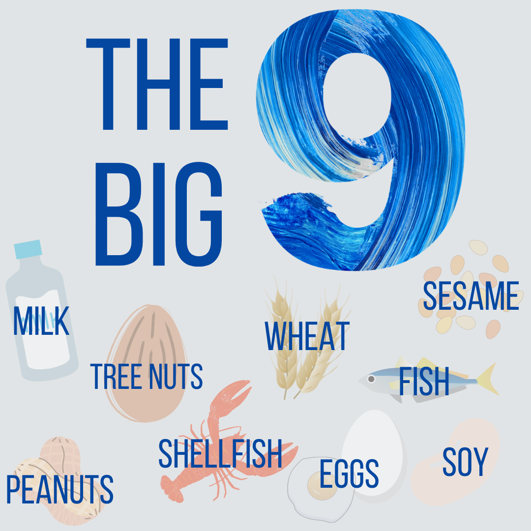 The Big 9 surrounded by images of milk, tree nuts, wheat, sesame, peanuts, shellfish, eggs, soy, and fish