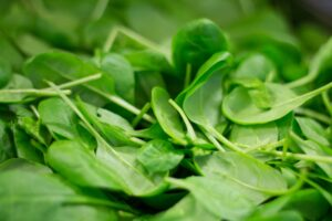 Pile of Spinach Leaves
