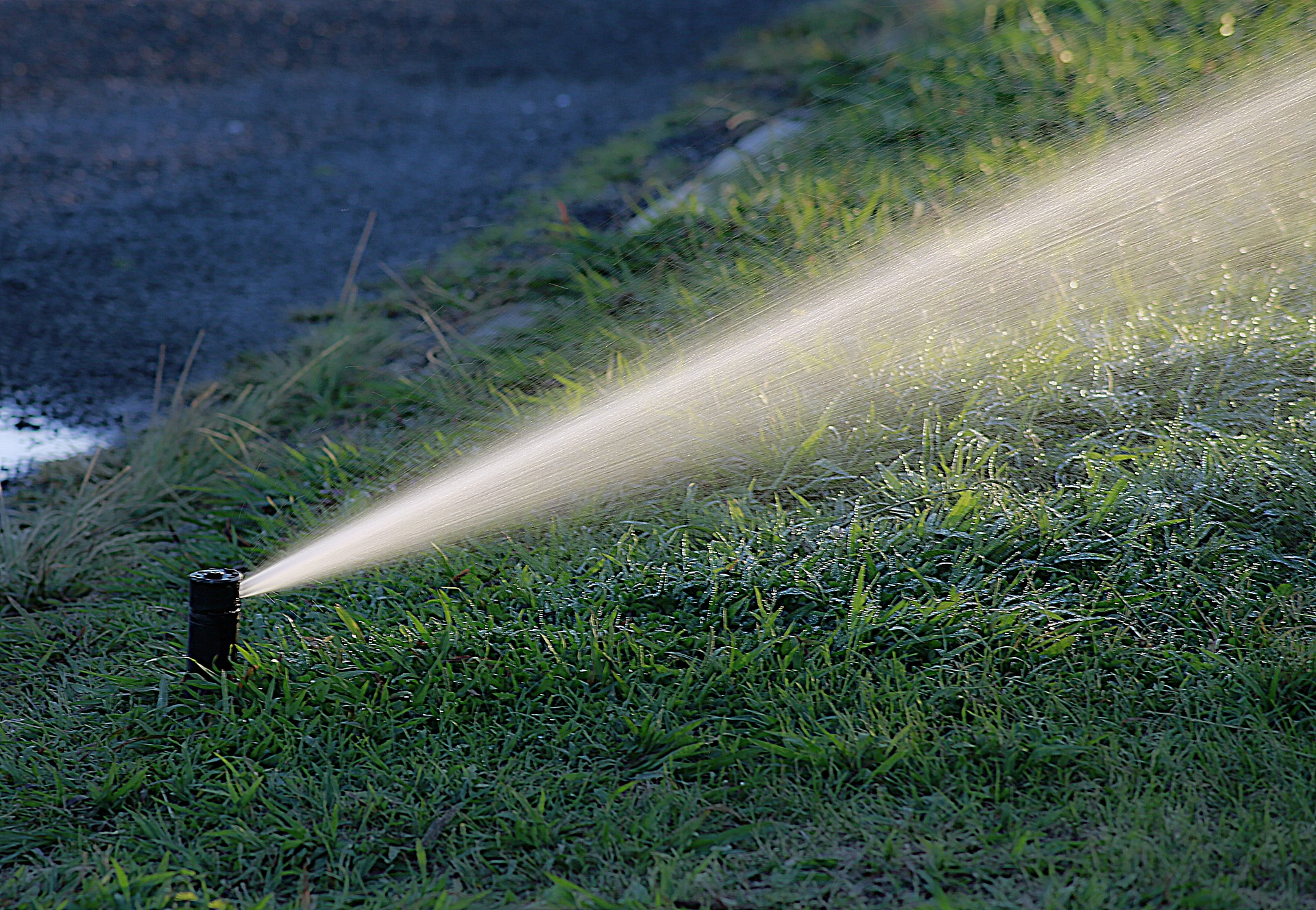 irrigation system watering lawn